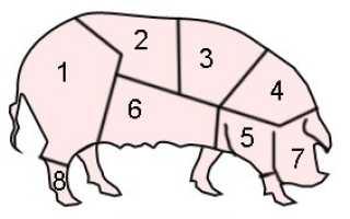 Схема разделки тушки свиньи или поросенка
