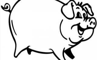 Как правильно зарезать свинью